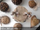 Зверюшки, птички и бабочки  61f586e4bb408f63c436efc34b69d68e