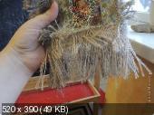Зверюшки, птички и бабочки  63d1b002d74f0b159bc88aafb33b0dc3