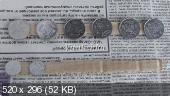 Топиарии  7beadc000ce836922e25adcfb14733e0