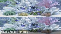 Аквариум 3D / Aquarium 3D (2011) BDRip