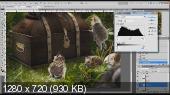 Коллажи и Фотоарт. Базовые знания и авторские секреты (2014) Видеокурс