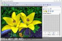 Tint Guide Software Pack DC 29.05.2014