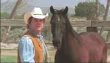 Большой Чак, маленький Чак / Big Chuck, Little Chuck (2004) DVDRip